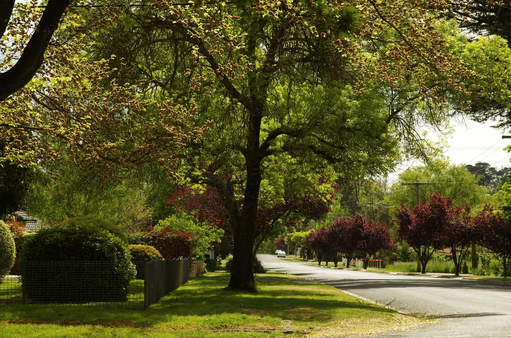 A street in Kyneton Vic