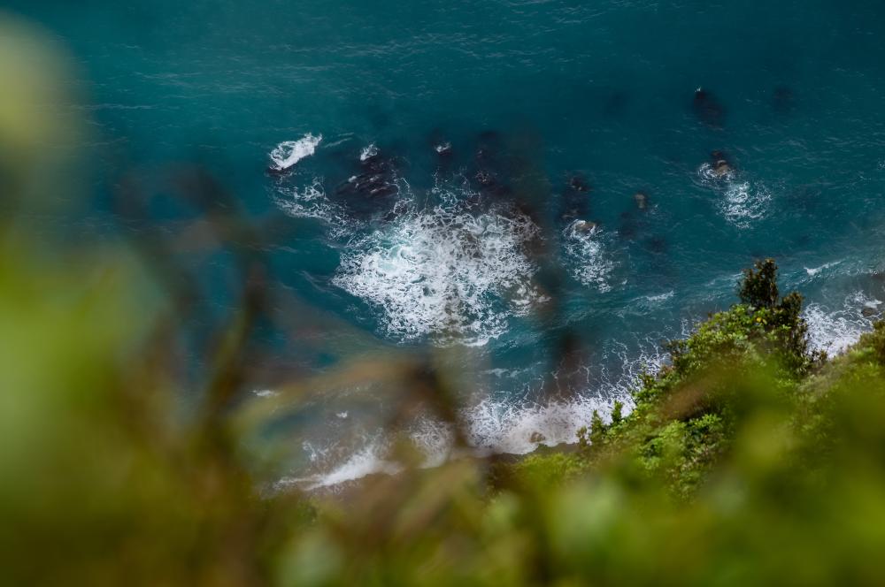 Kapiti Island Rocks