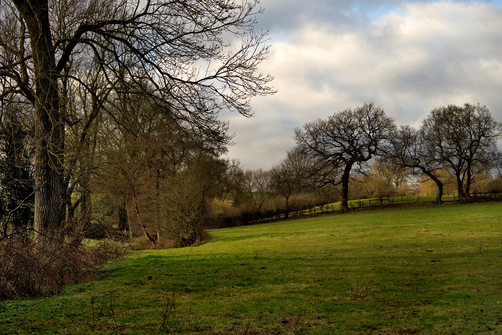 Late Afternoon English Countryside