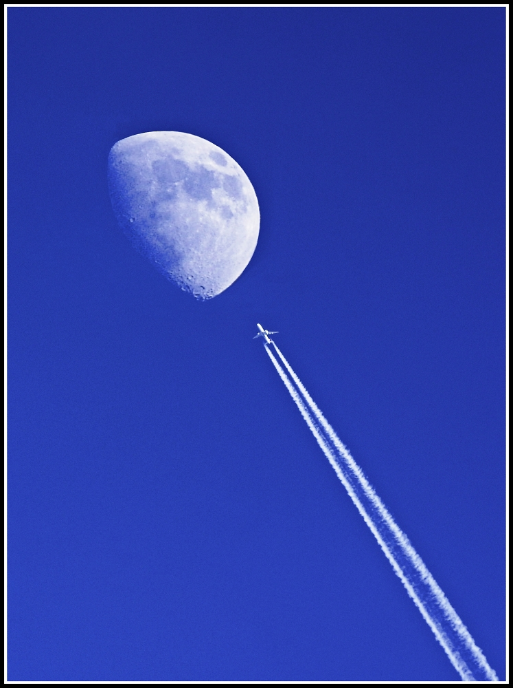 Fly me to the moon and let me play among the stars
