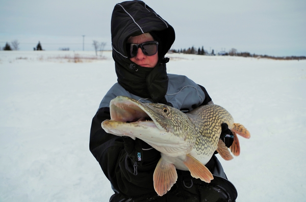 From a 10inch Hole in the Ice!