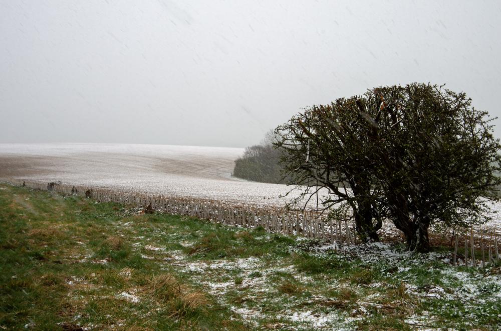 Snow it's April!!