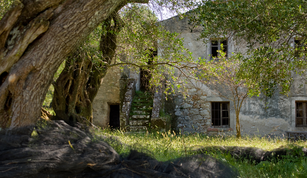 An image of Corfu Past