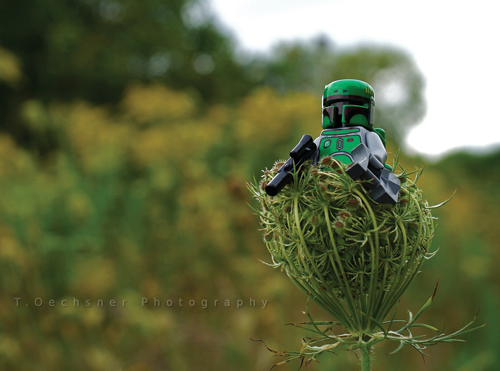 Lego photography Boba relaxes